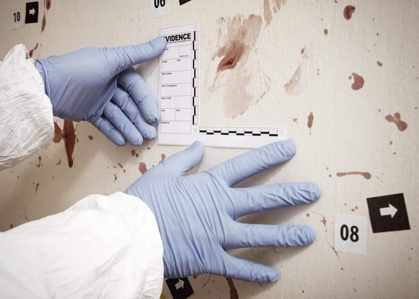 Study Forensics at William Peace University