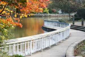 Pullen Park in the Fall 300x200 - 6 Exciting Reasons To Experience College Life In Raleigh