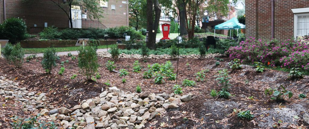 Rin Garden at William Peace University 1 1024x427 - Green Infrastructure project Improves WPU Campus life