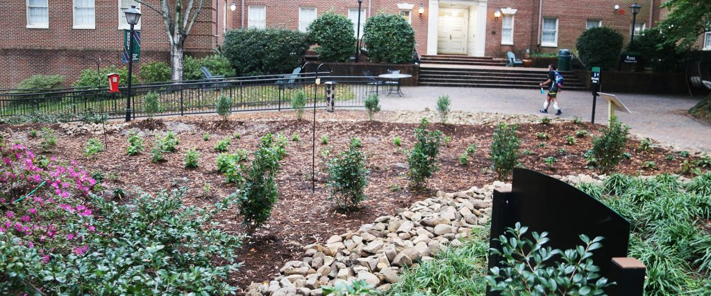 Rin Garden at William Peace University 2 1024x427 - Green Infrastructure project Improves WPU Campus life