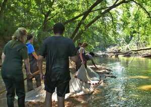 crabtree pic website 2  300x214 - WPU Biology Students & Professors Continue Research of Carcinogen Levels in Local Creek