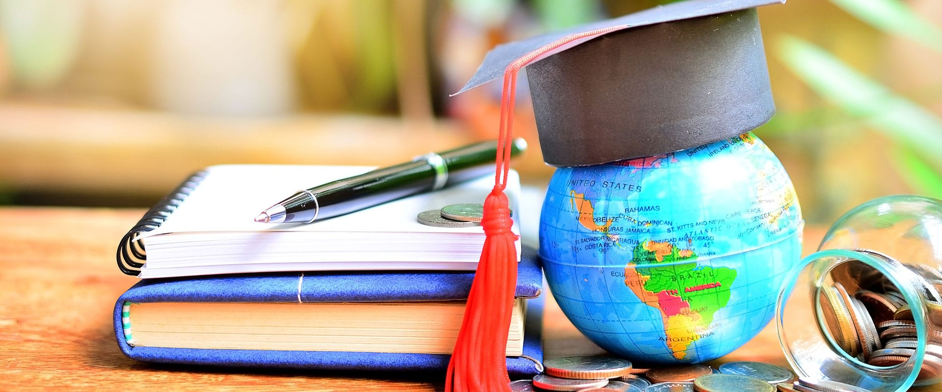 Global Studies Major