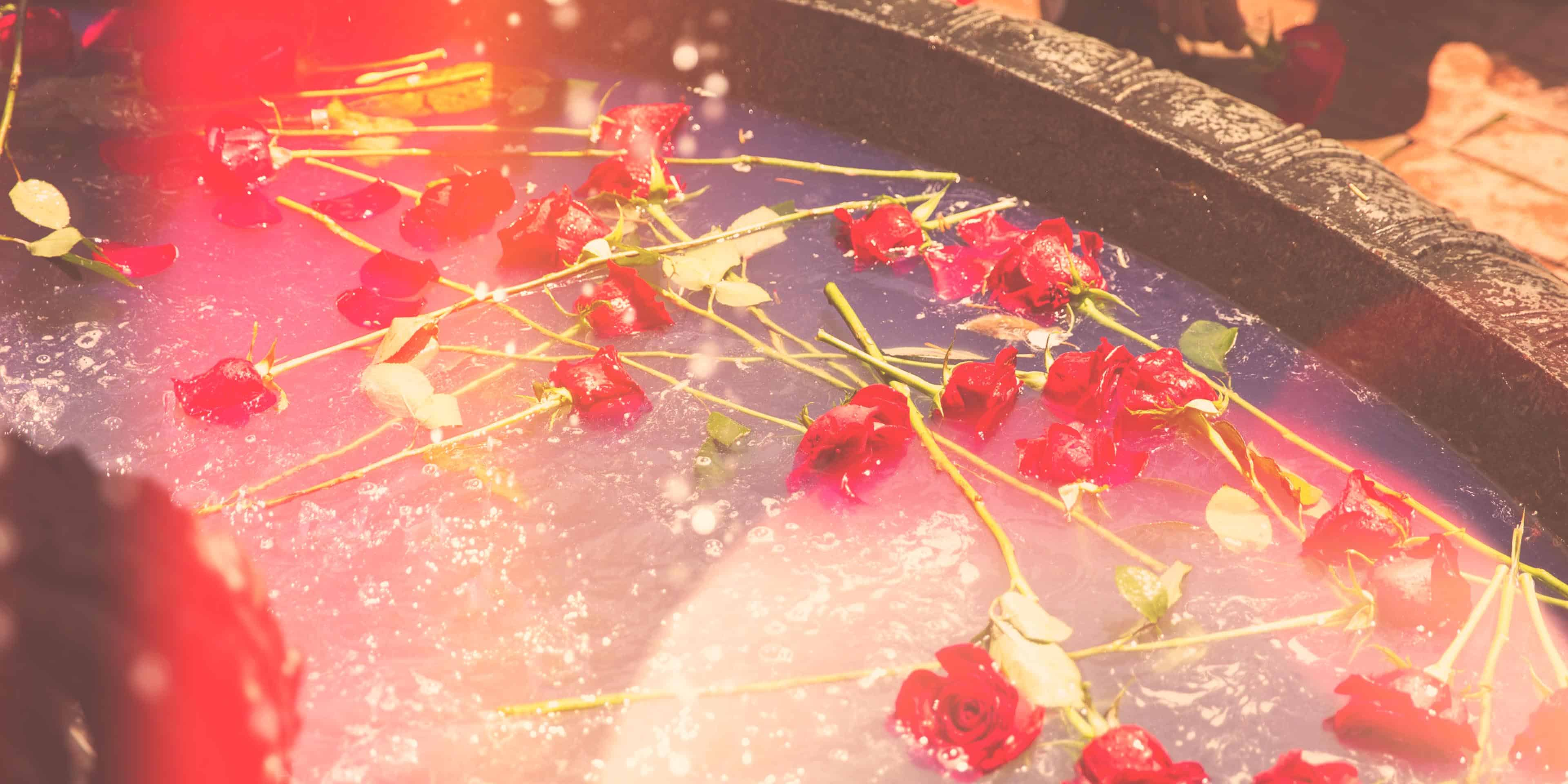 Roses thrown into the fountain on graduation.